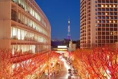 圣诞灯的东京照明 免版税库存图片
