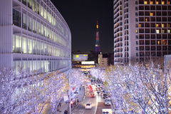 圣诞灯的东京照明 库存照片