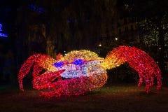 圣诞灯螃蟹 库存图片