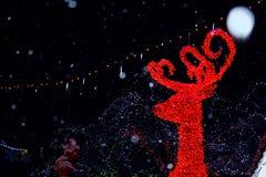 圣诞灯装饰喜欢一个作的世界 库存照片