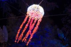 圣诞灯水母 免版税库存图片