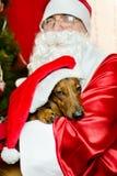 圣诞老人和圣诞节狗 库存图片