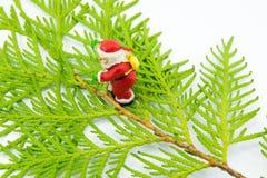 圣诞老人小雕象在白色的金钟柏叶子站立 库存照片