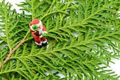 圣诞老人小雕象在金钟柏叶子站立 免版税库存照片