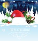 圣诞老人帽子在冬天森林里 库存图片
