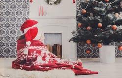 圣诞老人帽子的孩子在圣诞树附近,等待假日 免版税图库摄影