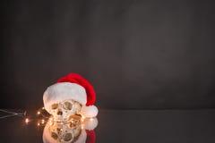 戴圣诞老人帽子的头骨 库存图片
