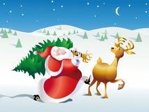 圣诞老人是冷杉 免版税库存照片