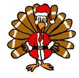 圣诞老人火鸡 库存照片