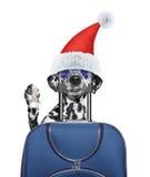 圣诞老人狗说再见并且去休假带着一个手提箱在喂 免版税库存图片