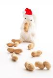 圣诞老人白色灰鼠 库存照片