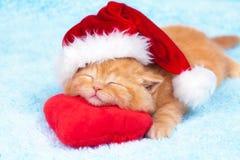 戴圣诞老人的帽子的小的小猫 免版税库存图片