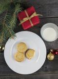 圣诞老人的曲奇饼和牛奶 库存图片