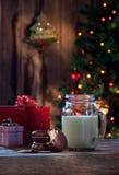 圣诞老人的膳食 库存照片