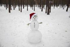 圣诞老人红色帽子的一个微笑的雪人  库存图片