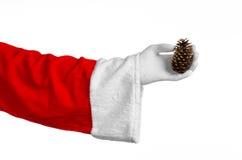 圣诞老人题材:圣诞老人在他的手上的拿着一冷杉球果在白色背景 图库摄影