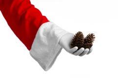圣诞老人题材:圣诞老人在他的手上的拿着一冷杉球果在白色背景 免版税图库摄影
