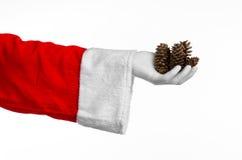 圣诞老人题材:圣诞老人在他的手上的拿着一冷杉球果在白色背景 库存照片