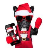 圣诞老人selfie狗 免版税图库摄影