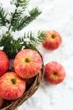 圣诞节сomposition用圣诞节t红色苹果和分支  免版税库存照片