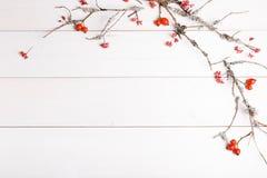 圣诞节、新年或者秋天背景、平的位置结构的圣诞节自然装饰品和冷杉分支,莓果,野玫瑰果 库存图片