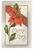 圣诞节一品红明信片葡萄酒 库存图片