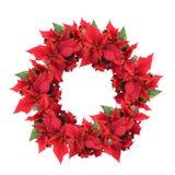 圣诞节一品红花圈 免版税库存图片