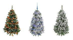 圣诞节三个结构树 库存图片