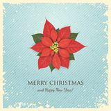 圣诞节与一品红的贺卡 免版税图库摄影
