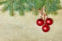 圣诞节与中看不中用的物品装饰的杉树 库存照片