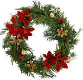 圣诞节与常青杉树的框架花圈和 免版税库存图片