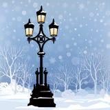 圣诞节与街灯的冬天风景在公园 图库摄影