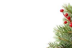 圣诞节与装饰的杉树 库存照片