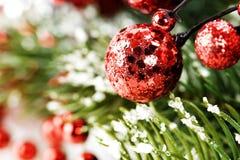 圣诞节与装饰的杉树 免版税库存图片