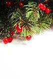 圣诞节与装饰的杉树 库存图片