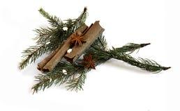 圣诞节与装饰2014年11月14日的桂香茴香 库存图片