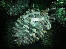 圣诞节与闪烁的杉木锥体 免版税库存照片