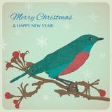 圣诞节与鸟的贺卡坐枝杈 库存图片