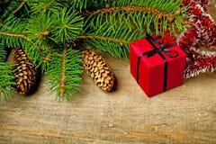 圣诞节与pinecones和装饰的杉树 免版税图库摄影