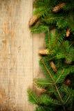 圣诞节与pinecones的杉树 图库摄影