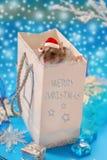 圣诞节仓鼠甜的一点 免版税库存图片