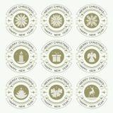 圣诞节以圈子的形式象征绿色,集合 免版税库存图片
