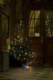 圣诞节传统结构树 库存图片