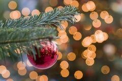 圣诞节作梦 免版税库存照片