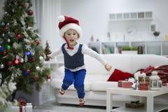 圣诞节假日喜悦  库存照片