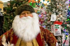 圣诞节假日在零售店的树显示 库存图片