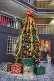 圣诞节假日树 免版税图库摄影