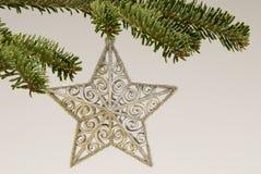 圣诞节停止的星形结构树 图库摄影