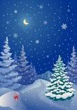 圣诞节具球果森林 免版税库存图片