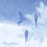 圣诞节典雅的水彩卡片 免版税库存照片